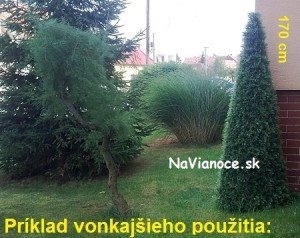 kužeľový vonkajší vianočný stromček
