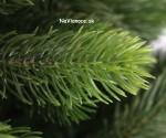 trojrozmerný vianočný stromček