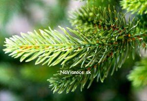 vianočný stromček 100% 3d