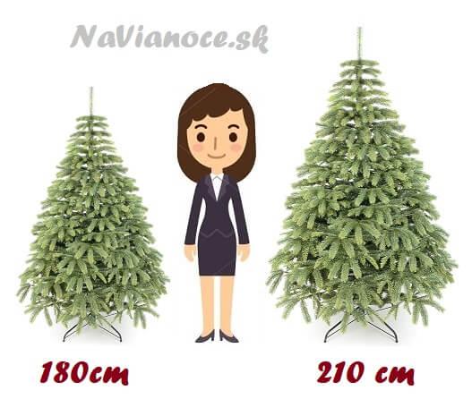 tabuľka výšky vianočných stromčekov